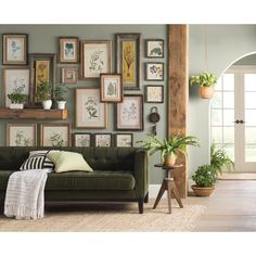 'Floral Botanical Study' 6 Piece Framed Graphic Art Print Set on Wood in Green - DECO - Pictures on Wall ideas Boho Living Room, Home And Living, Living Spaces, Earthy Living Room, Living Room Decor Green Walls, Vintage Modern Living Room, Modern Vintage Decor, Eclectic Living Room, Retro Home Decor