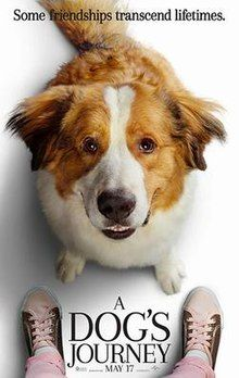 A Dog's Journey streaming VF film complet (HD) - streamcomplet - film streaming Kathryn Prescott, Hd Movies, Movies To Watch, Movies Online, Netflix Movies, Horror Movies, Prime Movies, 2020 Movies, Movies Free