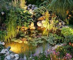 Bildergebnis für Hochteiche in kleinen Gärten                                                                                                                                                      Mehr