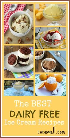 The best dairy free ice cream recipes www.cocoswell.com