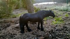 schleich custom andalusian