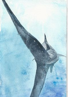 Whale shark watercolour painting