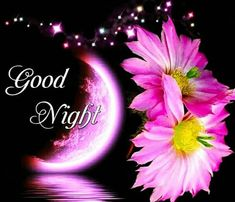 Good Night Qoutes, Good Night Thoughts, Good Night Prayer, Good Night Blessings, Good Night Gif, Good Night Messages, Good Night Sweet Dreams, Good Night Moon, Night Quotes