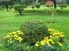 bangalore5.com: BANGALORE – GREEN CITY WITH PARKS AND OPEN SPACES ...