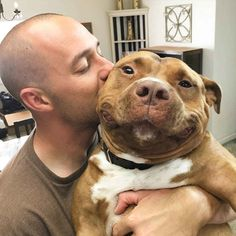Meaty the Dog Can't Stop Smiling After Being Rescued from a Shelter - BlazePress