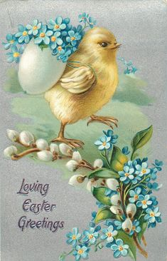 LOVING EASTER GREETINGS  chick carries eggshell filled with blue forget-me-nots, pussy willow & forget-me nots below