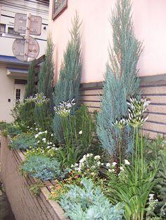 ナチュラルガーデン 植栽プラン - Google 検索 Garden Deco, Flower Beds, Landscape Design, Planting Flowers, Patio, Plants, Rest, Gardening, Google
