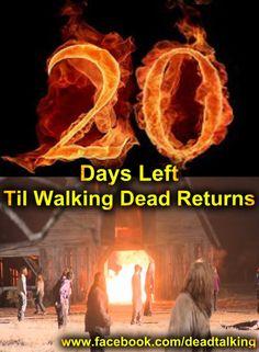20 DAYS
