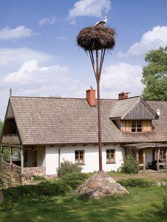 Stork's nest - Poland. Gniazdo nad jeziorem - Weranda Country