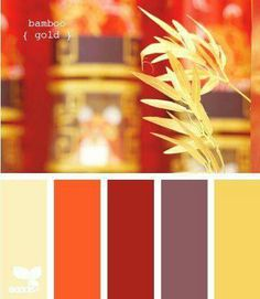 Palette ~ Bamboo gold