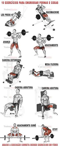 10 exercícios para engrossar pernas e coxas com vídeos (visitar artigo). - Γυμναστική - Welcome Home Fitness Workouts, Fitness Motivation, Endurance Training, Weight Training, Muscle Fitness, Mens Fitness, Gym Time, Build Muscle, Health