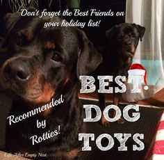 Rottweiler Recommended Dog Toys