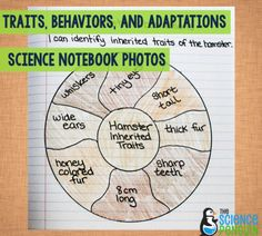 Traits, Behaviors, and Adaptations Science Notebook Pics