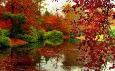 Autumn-Paradise-Wallpaper-2.jpg (1680×1050)