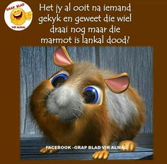 Made with Studio Max The Model is available here: [link] Cartoon Hamster Funny Picture Quotes, Funny Quotes, Afrikaans Language, Afrikaanse Quotes, Language Quotes, Good Morning Funny, 3d Studio, Photo Transfer, Lol So True