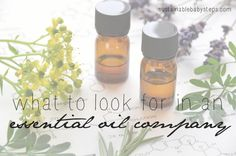 SUSTAINABLE BABY STEPS: Let us explain how we came to trust one particular essential oil company and use it exclusively for physical health and emotional wellness.