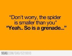 Dont worry the spider is smaller