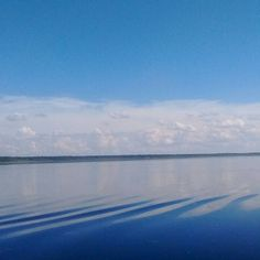 The surface of Lake Panasoffkee is like a mirror.