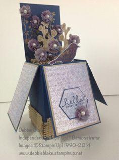 Card in a Box - Debbie Blake (Central Australia)
