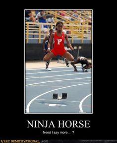 Ninja Horse
