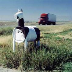 Horse mailbox.  This is so cute!  You could paint it to look just like your own favorite horse :-)