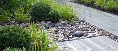 Courtyard garden with plank paving designed by Matt Nichol Garden Design.