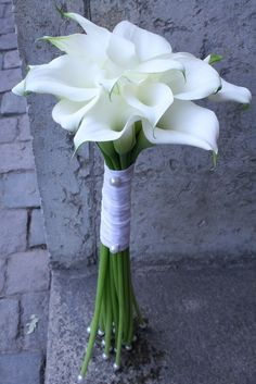 bröllopsbukett enkel - Sök på Google Wedding Bride, Wedding Events, Wedding Flowers, Wedding Day, Wedding Dresses, Weddings, Calla Lillies, Bride Bouquets, White Roses