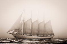 Four-masted schooner Creoula during 50th Anniversary Tall Ships Race, Torbay 2006 - Richard Sibley - Royal Museums Greenwich Prints