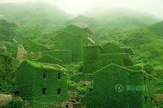 Goqui Island is located in Shengsi, a 400 island archipelago at the mouth of Yangtze river in China. The fishermen have all moved to mainland, and nature is crawling over the houses they left behind.