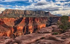 Grand Canyon cable cars threaten grandeur of one of world's natural wonders, say campaigners - Telegraph