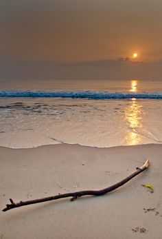 11 Stunning Beaches In India That Beat Any Exotic Summer Destination Abroad by Gunjan Upreti | Tripoto