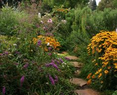 A Front-Yard Garden in No Time - Fine Gardening Article