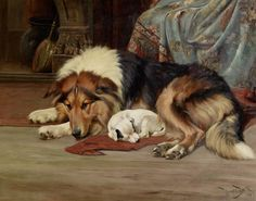 A Cozy Spot, vintage painting of a Collie.