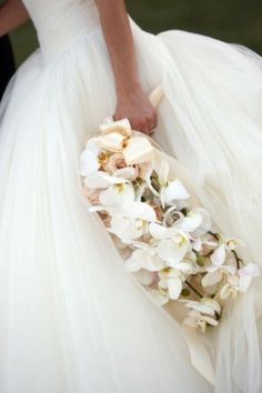 Orchids and organza
