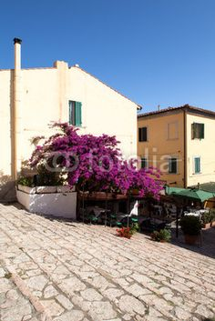 Stock photo available for sale at Fotolia: Cosimo De Medici Climb, Portoferraio, Elba Island