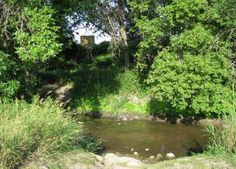On the banks of Plum creek- the real spot. I would love to visit this someday.