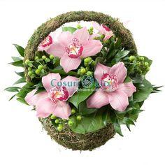 Cos orhidee roz, iata un produs de neuitat, prin frumusetea delicata a orhideelor roz si a hypericumului verde. Doar de la floraria noastra online poti comanda cele mai frumoase cosuri cu flori, orhidee imperiala roz de cea mai buna calitate. Livrare cosuri cu flori oriunde in Romania: rapid si sigur