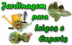 Curso Jardinagem para Leigos e Experts. Veja em detalhes no site http://www.mpsnet.net/G/429.html via @mpsnet Para conhecer  sobre jardins, paisagismo, plantas ornamentais; no que se refere ao manejo e manutencao de Jardins. Veja em detalhes neste site