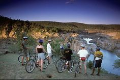Go on a cycling tour in the Kruger National Park and 7 more activities you can do in South Africa's wildlife parks South Africa Wildlife, Wildlife Park, Gym And Tonic, Adventure Holiday, Kruger National Park, Adventure Activities, Mountain Biking, Tours, African
