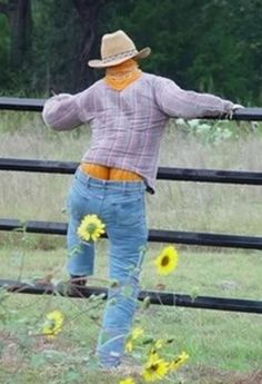 """Funny Country Halloween """"Jack O Crack"""" Funny Pumpkins, Fall Pumpkins, Halloween Pumpkins, Halloween Crafts, Halloween Decorations, Halloween Humor, Fall Decorations, Halloween Jack, Happy Halloween"""