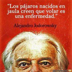 """►""""Los pájaros nacidos en una jaula creen que volar es una enfermedad"""" Alejandro Jodorowsky"""