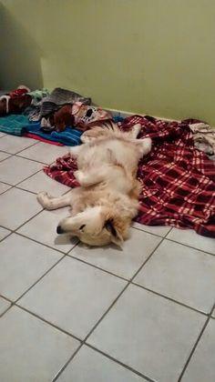 Siempre he dormido así y con la panza del embarazo más.