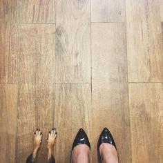 Carvalho HD da Cerâmica Portinari. #piso #porcelanatomadeira #woodfloor #ceramicaportinari #reforma #obra #projeto #decor #decoracao #home #homedecor #meuapartamento #primeiroape #brasilia