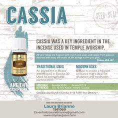 Cassia Essential Oil of the Ancient Scriptures by Young Living. Check our all of our Oils from the bible Yl Oils, Yl Essential Oils, Young Living Essential Oils, Doterra Oils, Feast Of Tabernacles, Cleanse Me, Rose Of Sharon, Living Essentials, Young Living Oils