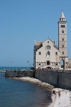 Trani,Cathedral  province of Barletta Andria Trani, Puglia region Italy