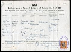 Original  Reading Pa Birth Certificate In German Hand Colored