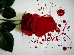 love is scatterd