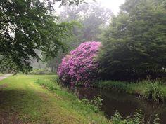Den Haag Ockenburg 3 juni 2016