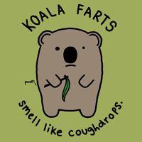 Koala Farts shirt by Natalie Dee (http://www.nataliedee.com/)