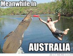 Meanwhile in Australia Meme   Slapcaption.com